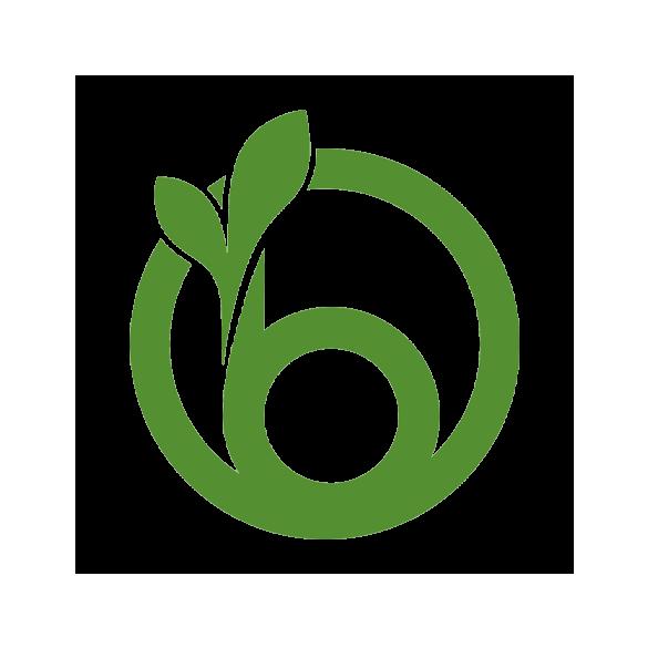 Nyelezett íves lombseprű műanyag fekete 60cm
